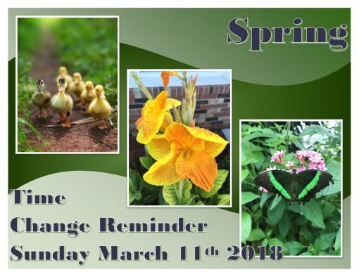 Spring time change 3-11-18